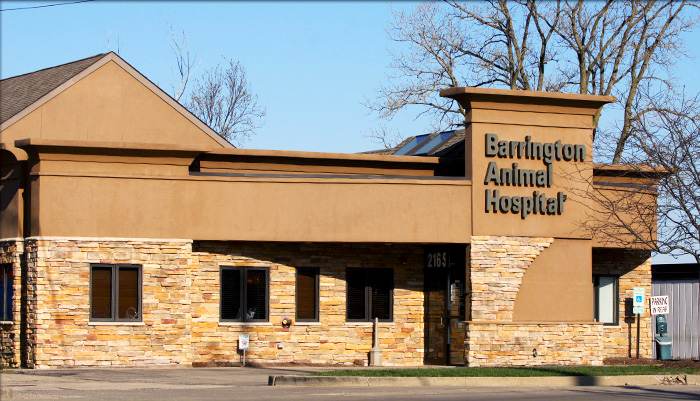 barrington veterinary