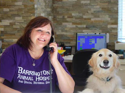 barrington animal hospital