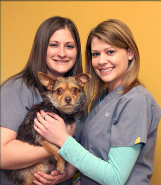 Barrington Veterinary Newsletter